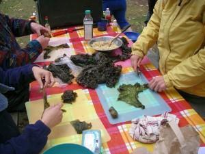 seaweed preparation